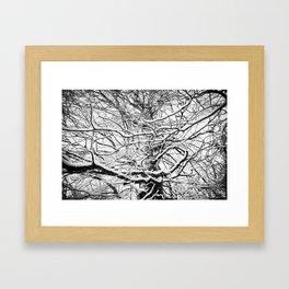 Winter Wonderland 3 Framed Art Print