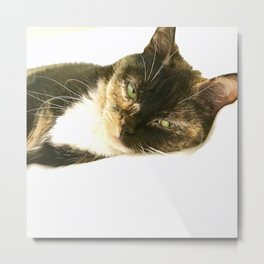 Kitty Stink Eye Metal Print