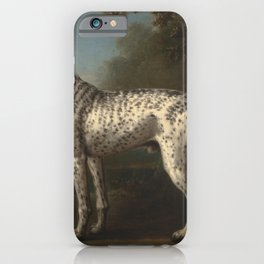 A Grey Spotted Hound by John Wootton iPhone Case