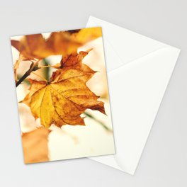A Fall Like This Stationery Cards