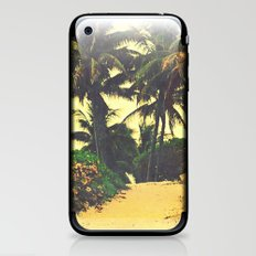 Palm Tree Path iPhone & iPod Skin