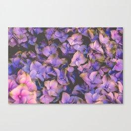 Flower XIX Canvas Print