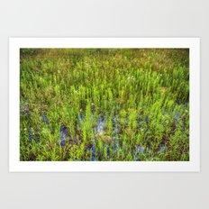 Prairie Oil Art Print