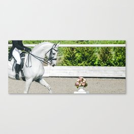 Beautiful girl and white horse Canvas Print