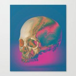 sku11 Canvas Print