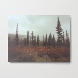 Alaskan Wonderland Metal Print
