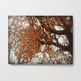 Colors Thriving As The Leaves Are Dying Metal Print