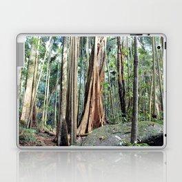Curtis Falls Rainforest Laptop & iPad Skin