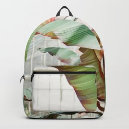 Botanical photography | Green tropical plants in the botanical garden of Dublin | Green / red Backpack