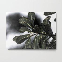 Leafy Afternoon Metal Print