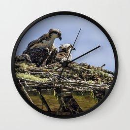 Osprey Parenting 101 Wall Clock