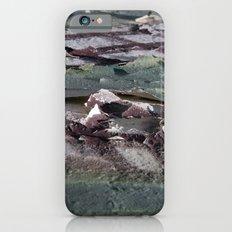 Landscape 3310C iPhone 6s Slim Case