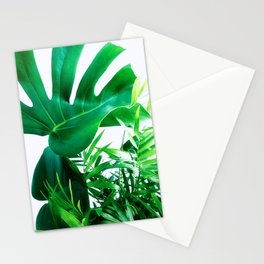 Tropical Display Stationery Cards