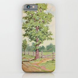 Vintage Print - Familiar Trees and Leaves (1911) - Sassafras iPhone Case