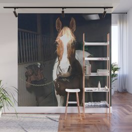 Horse Brown White Wall Mural