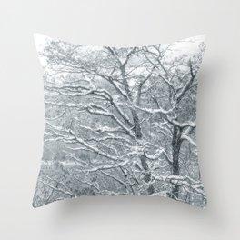 Winter Moods 1 Throw Pillow