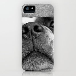 dog looking through fence iPhone Case