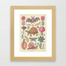 Et coloris natura VII Framed Art Print