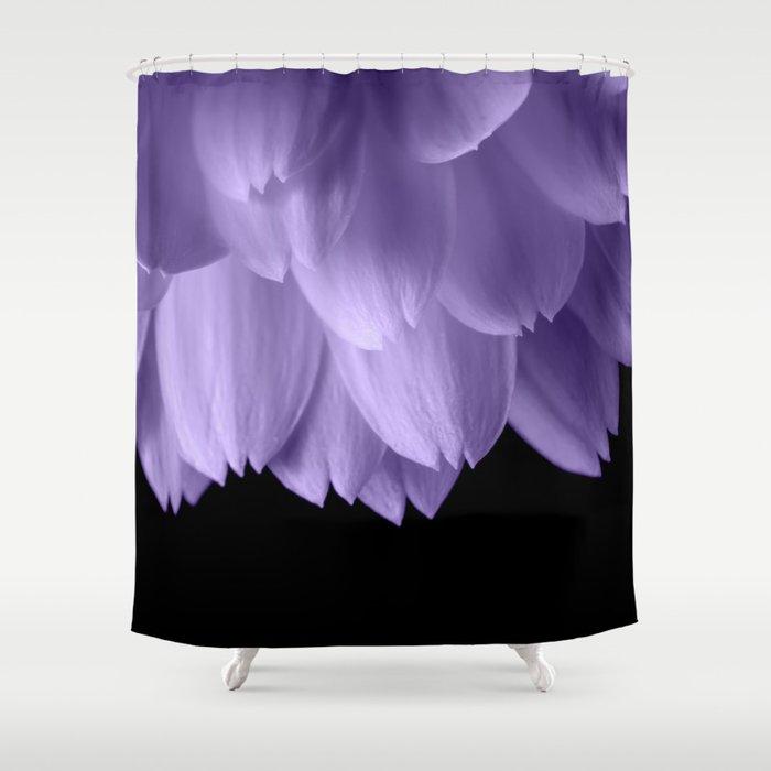 Ultra Violet Purple Flower Petals Black Shower Curtain