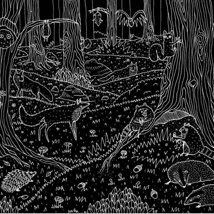 Nocturnal Animals of the Forest Comforters