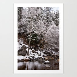 Snow and Trees by the Creek Art Print