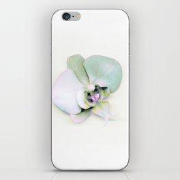 Single II iPhone Skin
