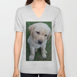 Whatever you want Lab puppy Unisex V-Neck