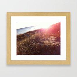 Falsterbo Beach Framed Art Print