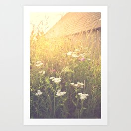 Boho Summer Sunshine Art Print