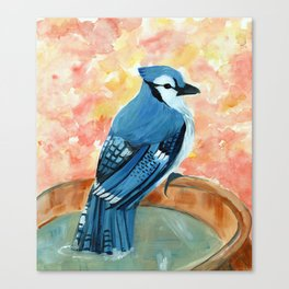 Bluejay in Fountain Canvas Print