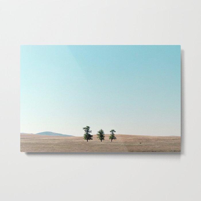 Three of a Kind (Northern California) Metal Print