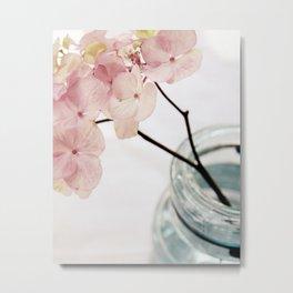 Minimalist Pink Hydrangea Metal Print
