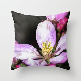 Close up of a Crab apple blossom Throw Pillow