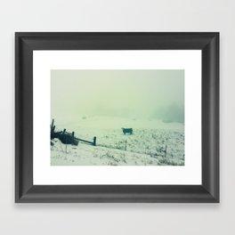 Foggy Cow Framed Art Print