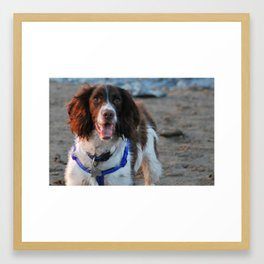 walks on the beach Framed Art Print
