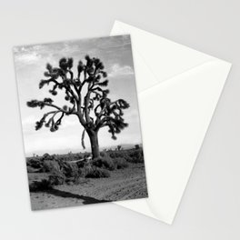 A Joshua tree (Yucca Mohaviensis) in the Mojave Desert near Lancaster, 1904 Stationery Cards