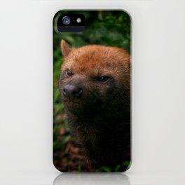 Bush Dog iPhone Case