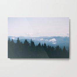 Forest XXIII Metal Print