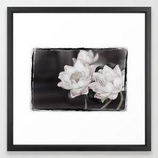 Lovely Water Lily Framed Art Print