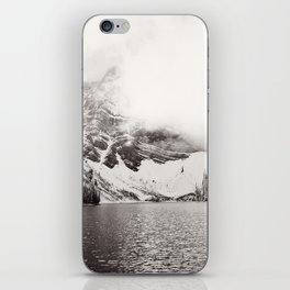 Wild Winter (B&W) iPhone Skin
