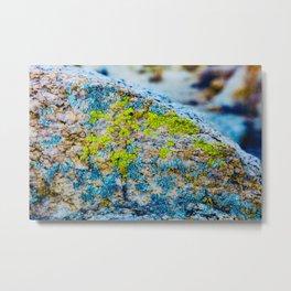 Hyper Lichen on Cool Desert Rock Metal Print