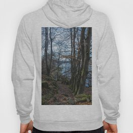 Forest Pathway Hoody