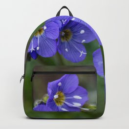 Jacob's Ladder - Yellowstone National Park Backpack