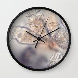 Epistylis Inspiration Wall Clock