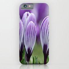 Purple Crocus Slim Case iPhone 6s