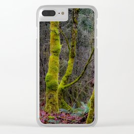 Moss-Covered Trees Clear iPhone Case