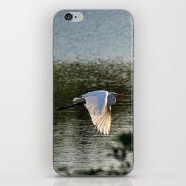 Great Egret in Flight iPhone Skin