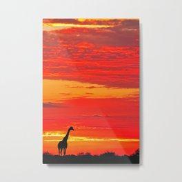 Giraffe at a sunrise in Namibia Metal Print