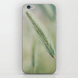 Espiga iPhone Skin
