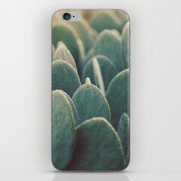 Green + Gold iPhone Skin